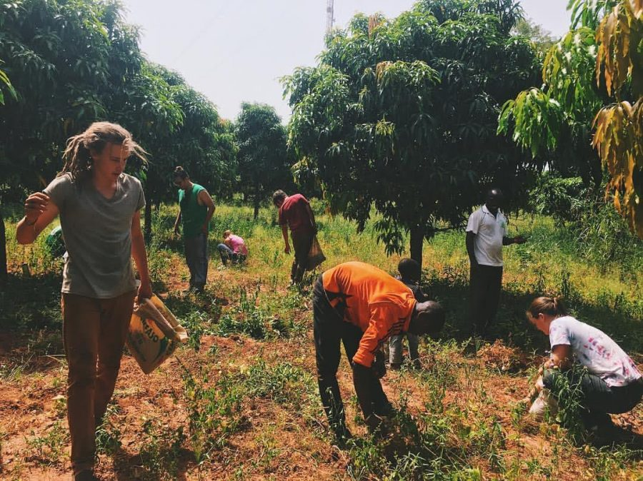 """This year's Burkina Faso Outtatown spent a morning picking """"earth peas"""" with a farmer and his 4-yr-old son."""