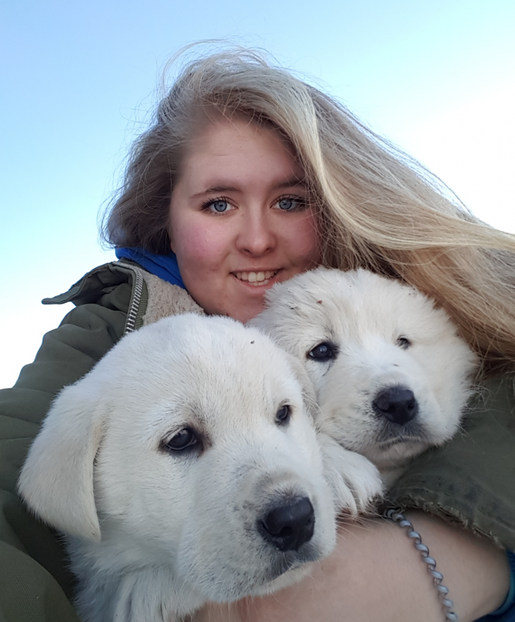 Katy Neuman, science student at CMU, with two white puppies.
